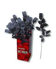 Art rose black and white