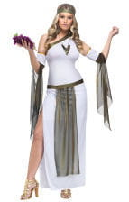Love Goddess Costume