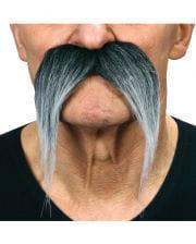 Mexikaner Bart grau meliert