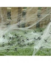 Mini Spiders In A Bag 50 Pcs.