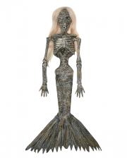 Mummified Mermaid Hanging Figure