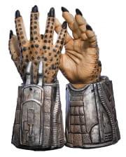 Predator Handschuhe Small