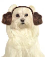 Princess Leia Dog Frisur