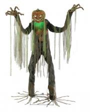 Riesiger Evil Pumpkin Animatronic