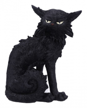Salem Witch Cat 19,6cm