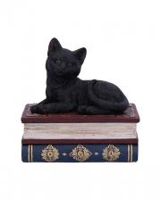 Black Cat On Spell Books Box 11,7cm