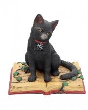 Schwarze Katze mit Hexenbuch