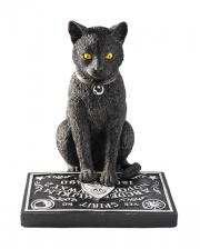 Schwarze Katze mit Ouija Brett
