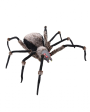 Black Giant Spider With Light Eyes 130cm