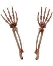 Skeleton-free Garden Plug