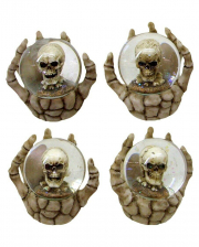 "Skeleton Hand With Skull ""Snow Globe"