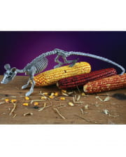 Skeleton rat gray 40cm