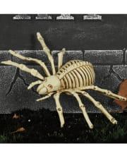 Skelett Spinne 24cm