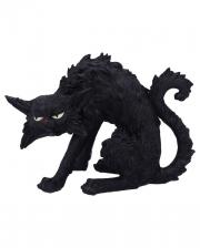 Spite Witch Cat 23,5cm