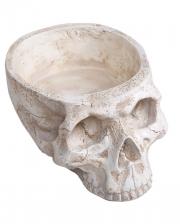 Skull Bowl 28cm