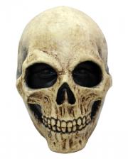 Weathered Skull Mask