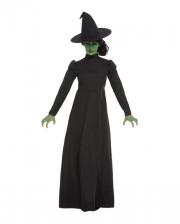 Wicked Witch Hexenkostüm für Erwachsene