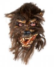 Wolf Man Horror Maske