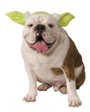 Yoda Ohren für Hund & Katze