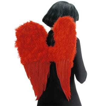 Engelsflügel rot 60 x 50cm