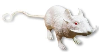 White plastic rat