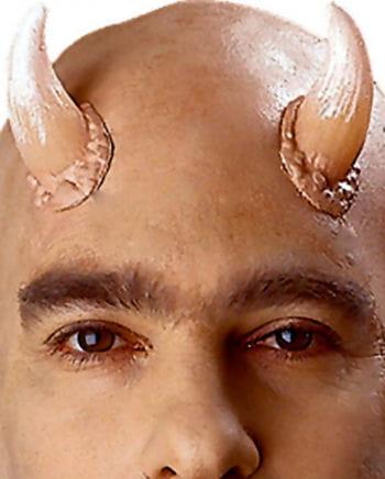 Universal Horns / Hörner Large