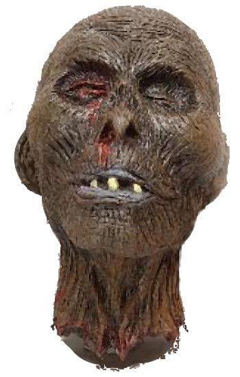 Fäulnis Zombie Kopf