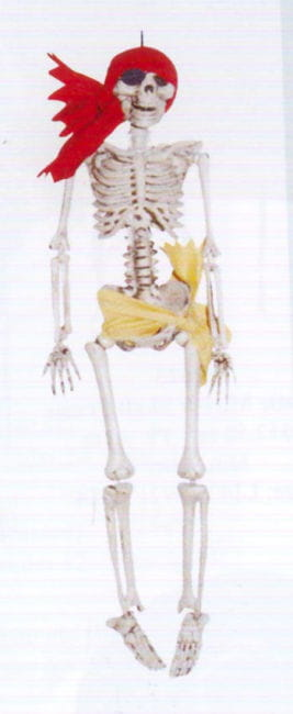 Pirate Skeleton 3