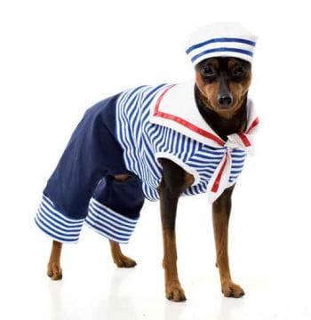Sailor Dog Costume Size S