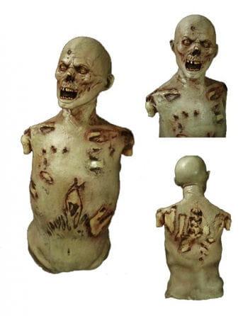 Boneyard Zombie Decoration Prop