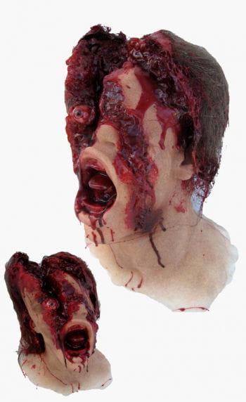 Hammer Mordopfer Kopf