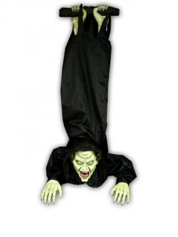 Hanging Rocking Vampire