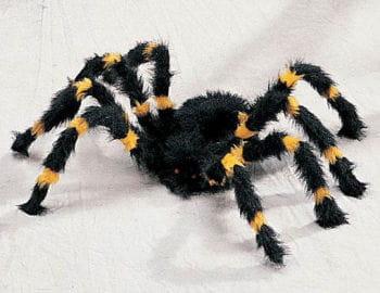 Schwarz, gelbe Monster Spinne