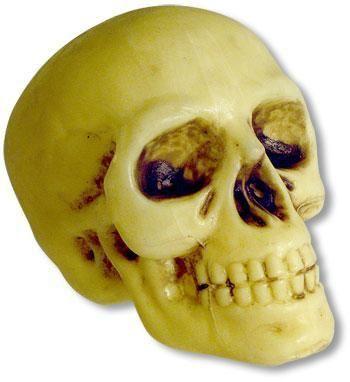 Mini skull 10 cm