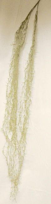 Spanish Decoration Moss