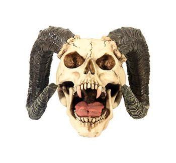 Horned Vampire Skull