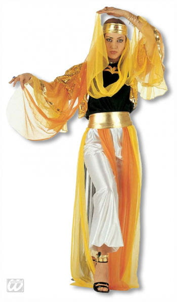 Harem Dancer Costume S