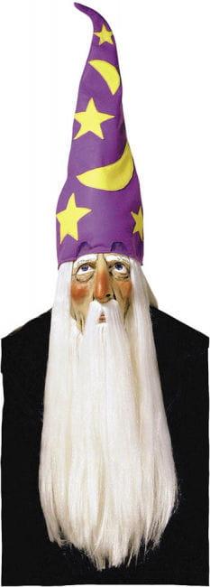Zauberermaske mit Hut und haaren