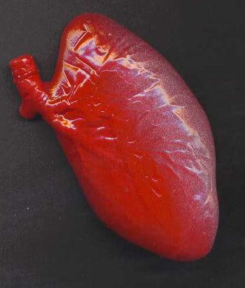 Slimy Goo liver