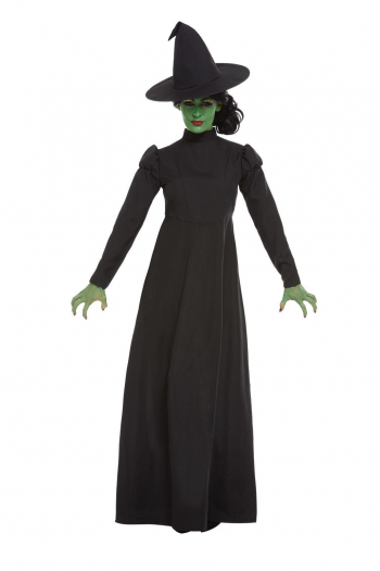 Wicked Witch Witch Costume For Adults
