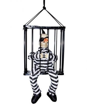 Erupting skeleton in cage