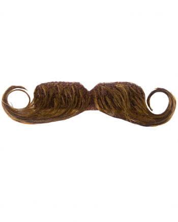 beard Bureaucrat Brown