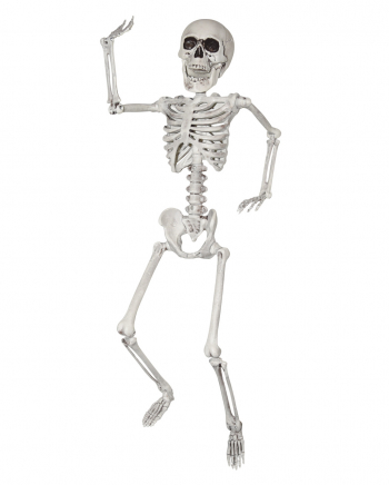 Mobile Plastic Skeleton 60cm