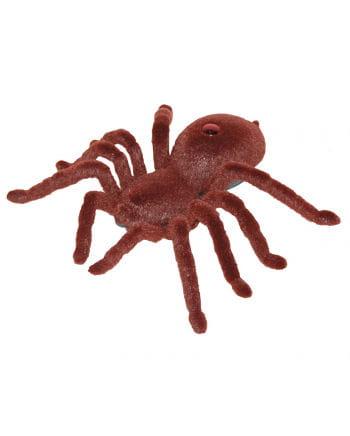 Braune Spinne mit Fernbedienung