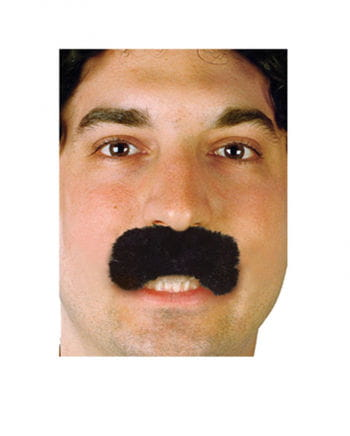 Economy Bart Borat