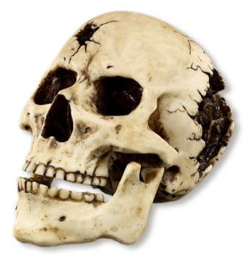 Einschussloch Totenkopf Figur