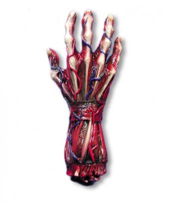 gehäutete Hand rechts