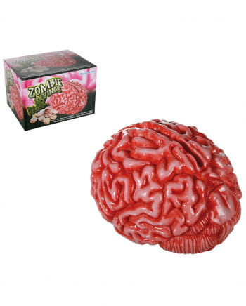 Zombie Brain Money Box