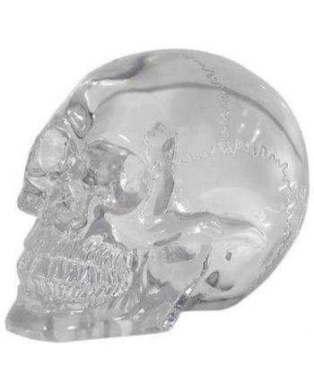 Glass Clear Skull Head 15 Cm