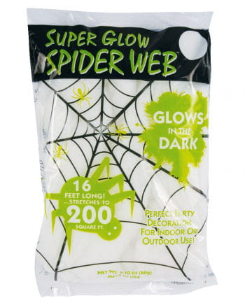 Glow in the Dark Spiderweb 60gr.
